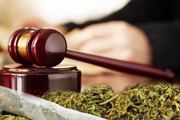 Posiadanie narkotyków – jak się bronić?